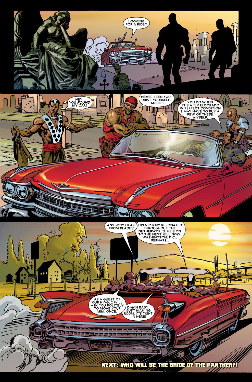 Black Panther (2005) 13 Page 22