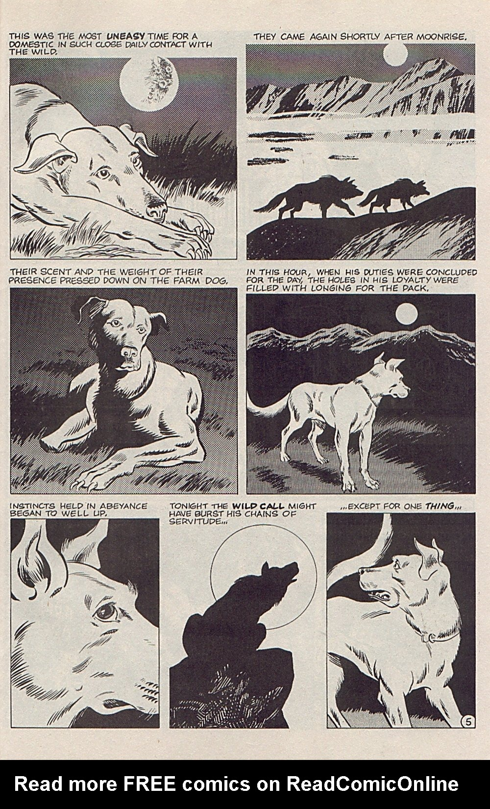 Read online Xenozoic Tales comic -  Issue #5 - 28