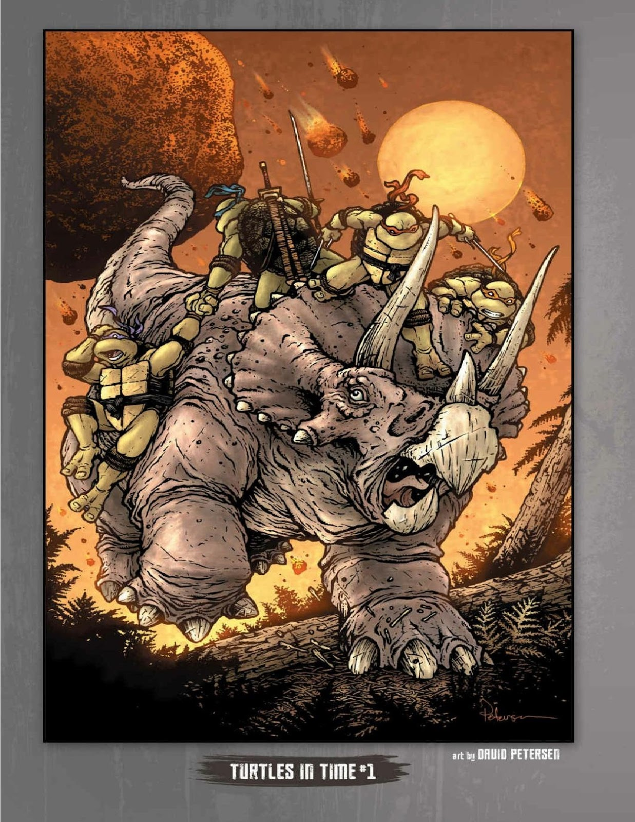 Read online Teenage Mutant Ninja Turtles: The IDW Collection comic -  Issue # TPB 5 (Part 1) - 7