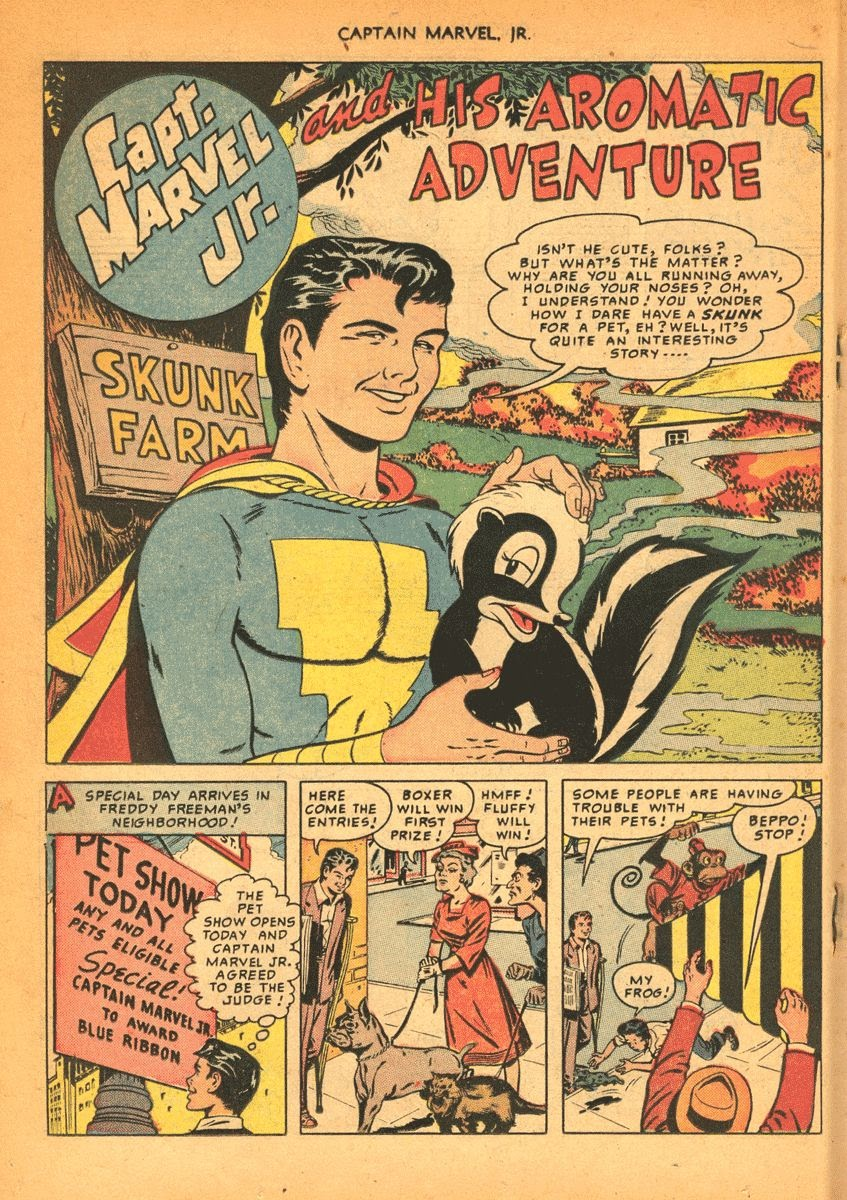 Captain Marvel, Jr. issue 84 - Page 19