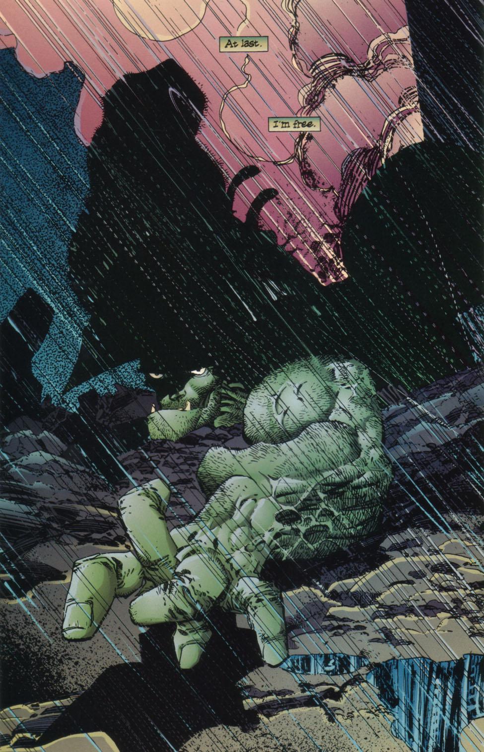 The Savage Dragon (1993) Issue #23 #26 - English 25