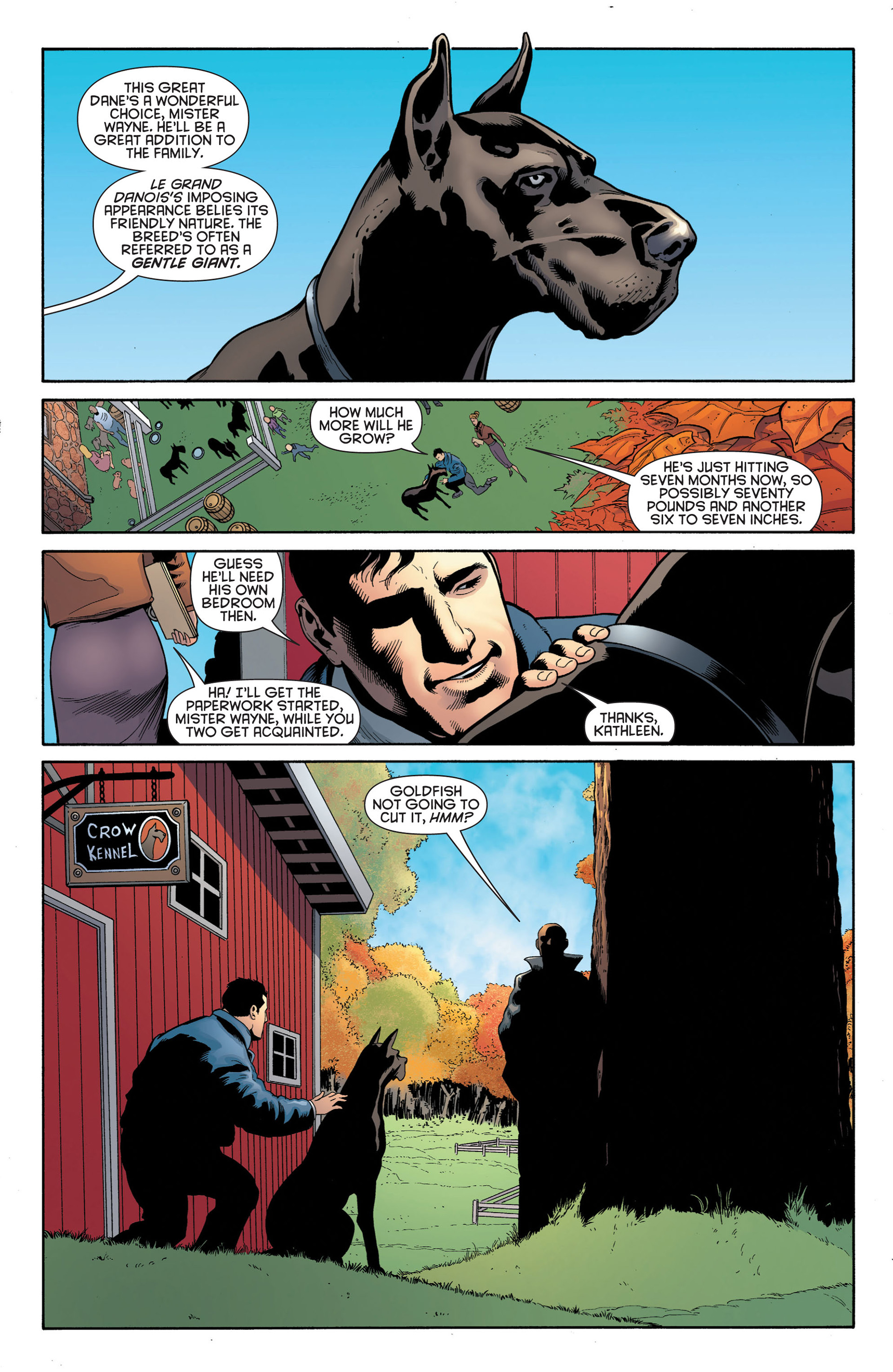 Read online Batman and Robin (2011) comic -  Issue #2 - 16