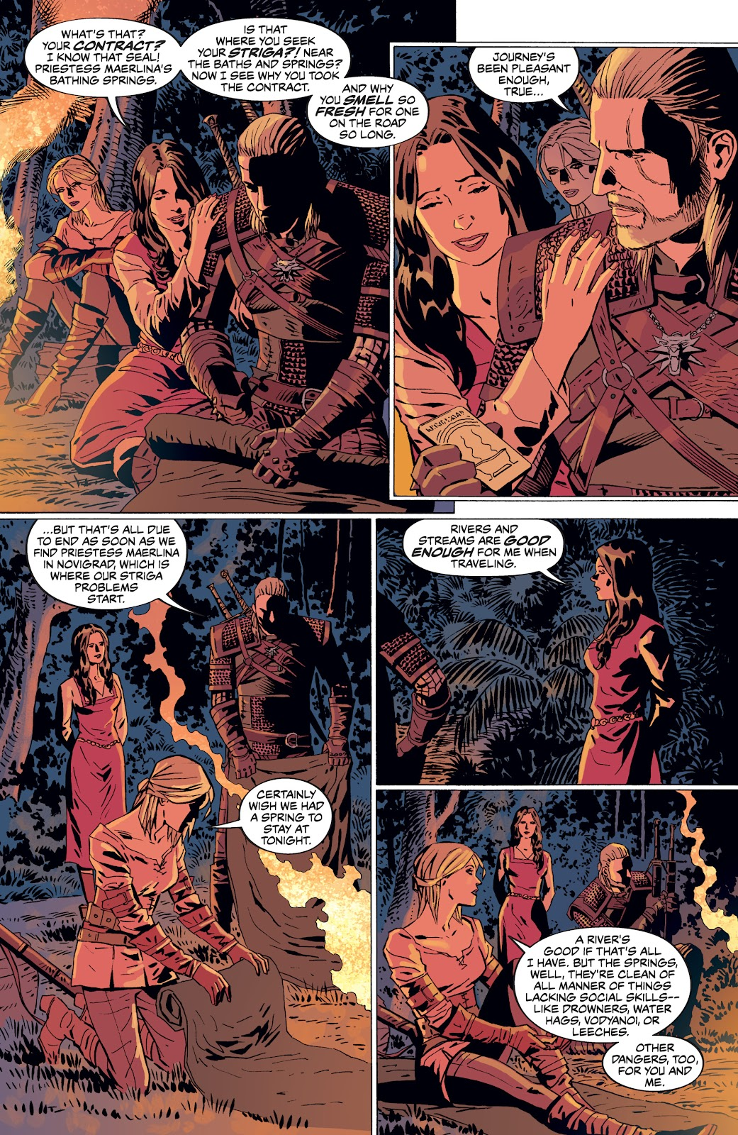 Read online The Witcher Omnibus comic -  Issue # TPB (Part 4) - 5