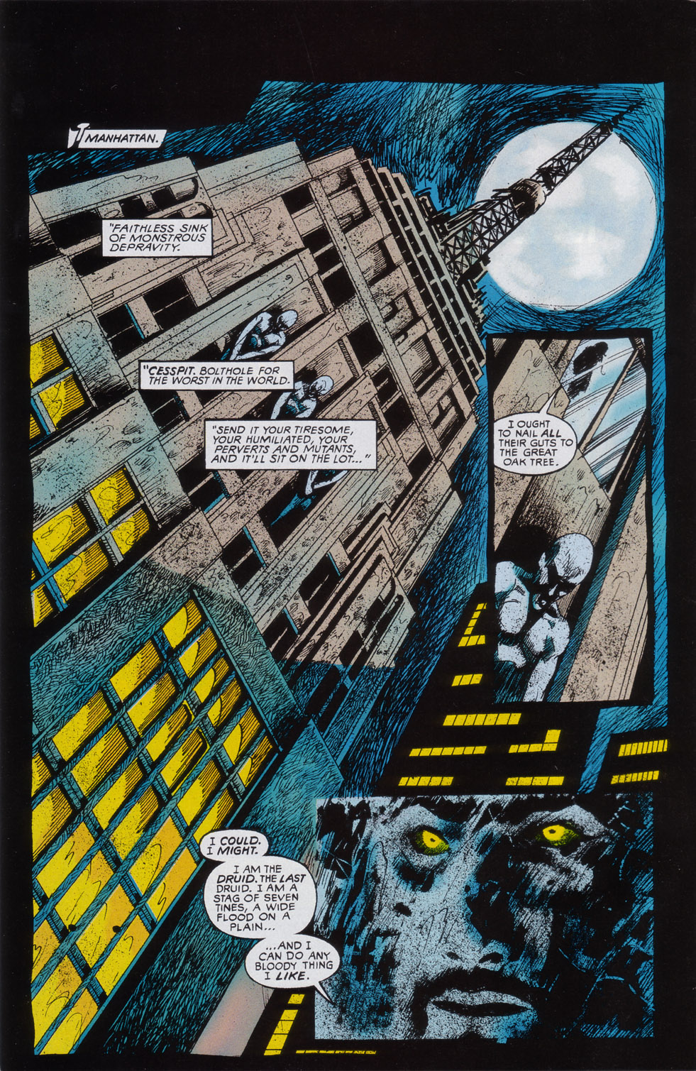 Read online Druid comic -  Issue #2 - 3