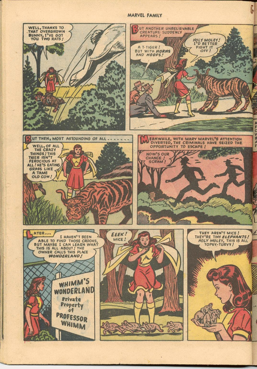 The Marvel Family issue 38 - Page 28