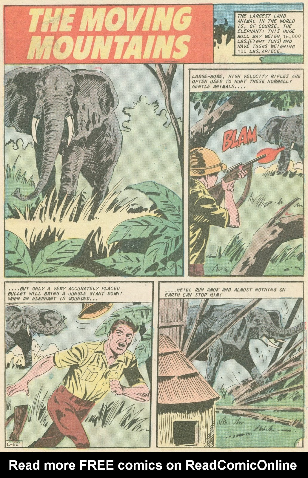 The Phantom (1969) issue 31 - Page 18