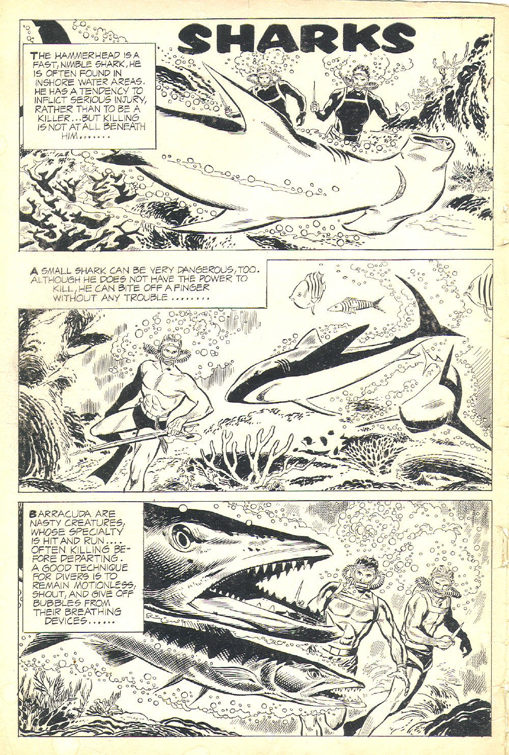 The Frogmen 4 Page 2