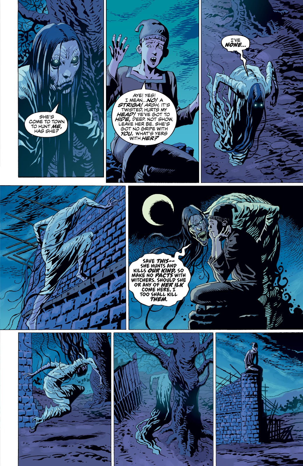 Read online The Witcher Omnibus comic -  Issue # TPB (Part 4) - 80