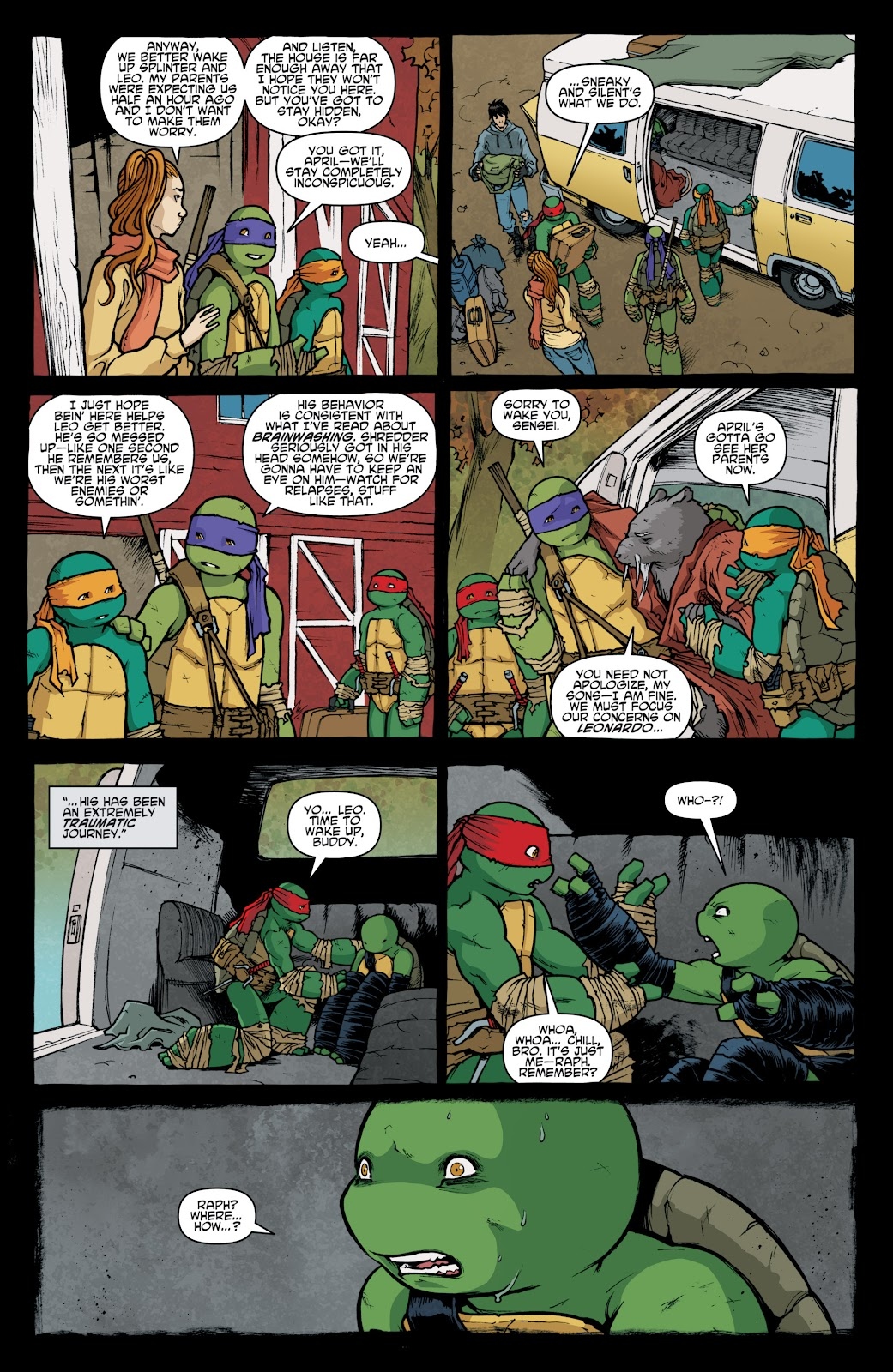 Read online Teenage Mutant Ninja Turtles: The IDW Collection comic -  Issue # TPB 4 (Part 1) - 13