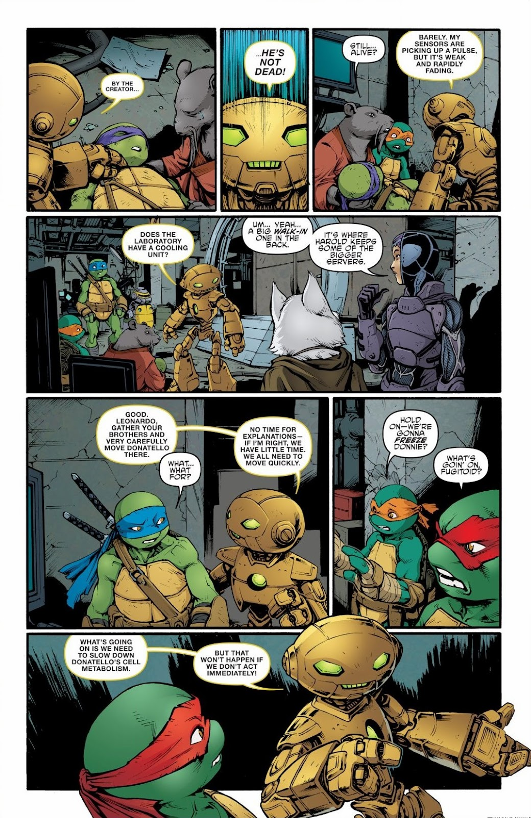Read online Teenage Mutant Ninja Turtles: The IDW Collection comic -  Issue # TPB 6 (Part 2) - 5