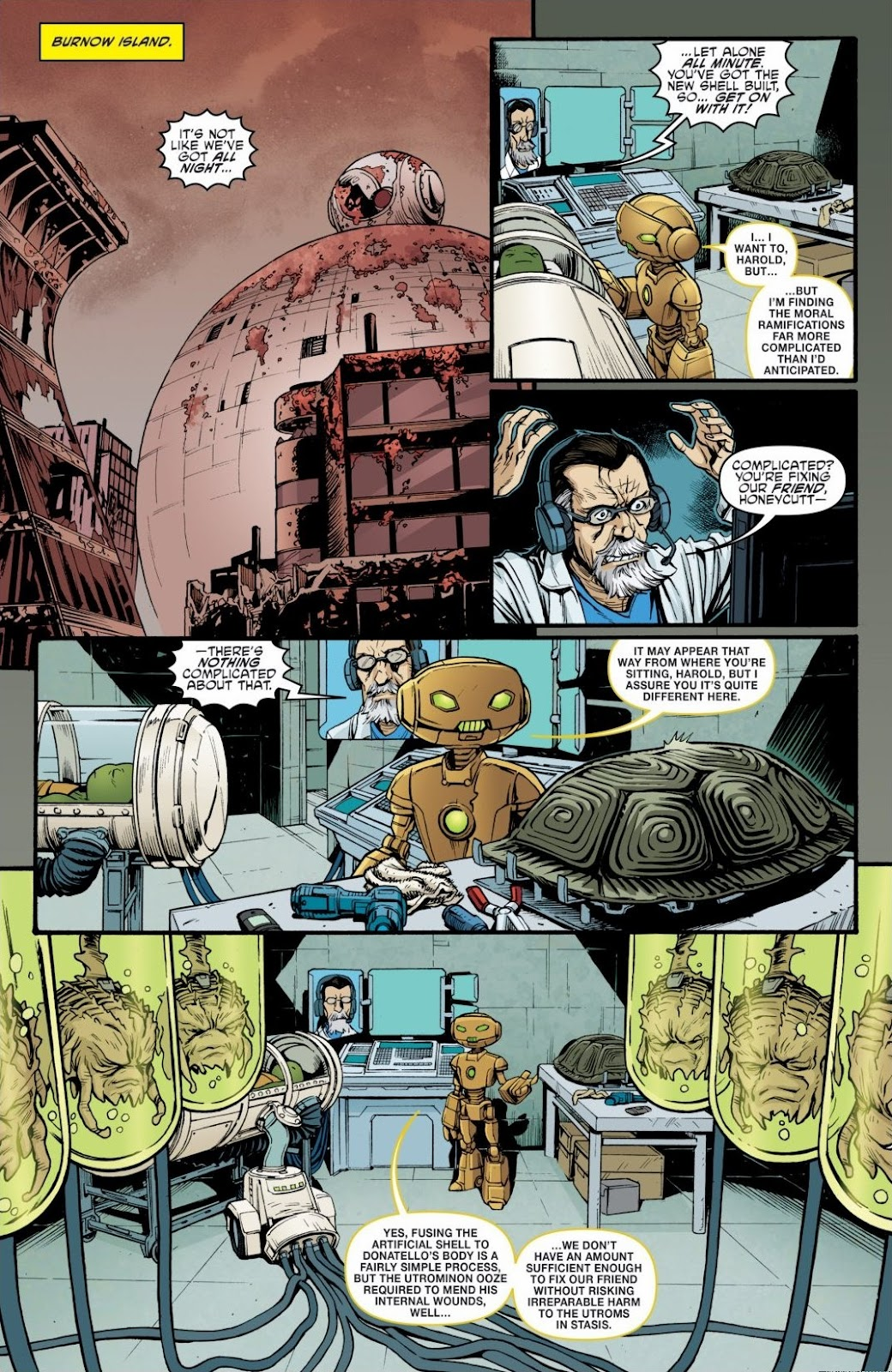 Read online Teenage Mutant Ninja Turtles: The IDW Collection comic -  Issue # TPB 6 (Part 3) - 21