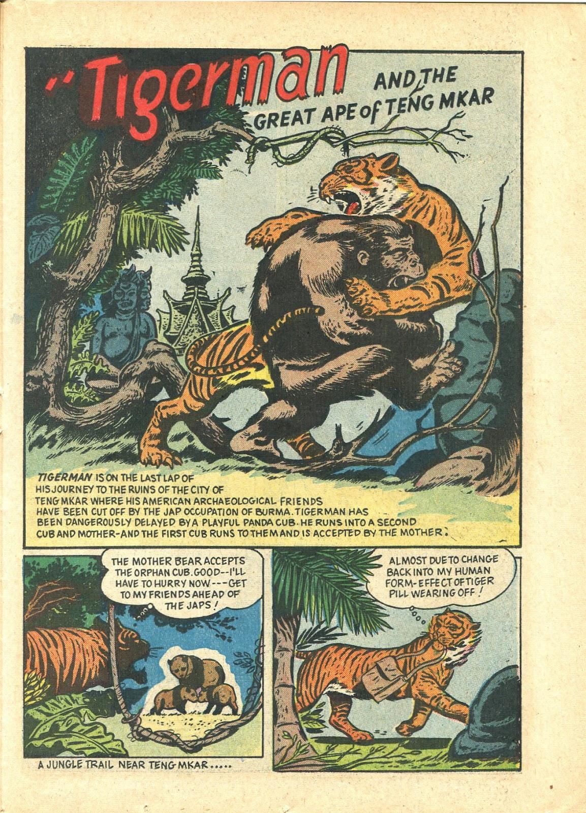 Read online Super-Magician Comics comic -  Issue #21 - 41