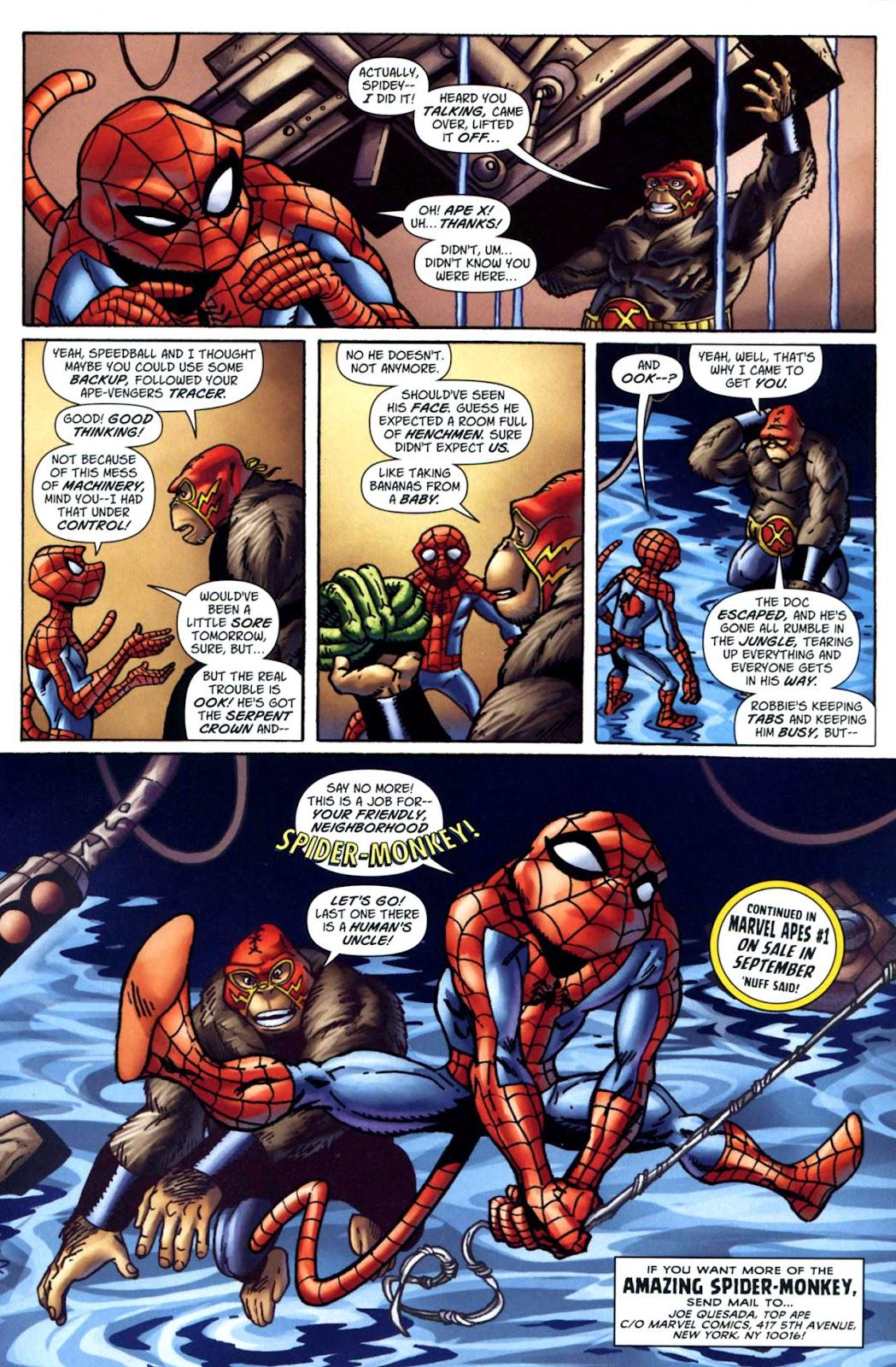 Amazing Spider-Man Family Issue #1 #1 - English 29