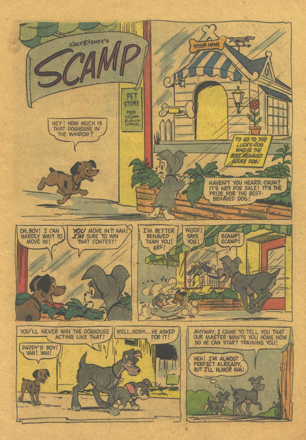 Walt Disney's Comics and Stories issue 216 - Page 13