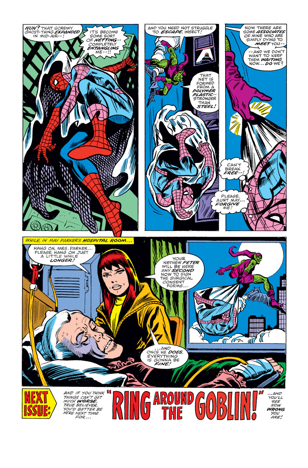 The Amazing Spider-Man (1963) 178 Page 17