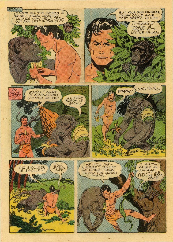 Tarzan (1948) issue 76 - Page 24
