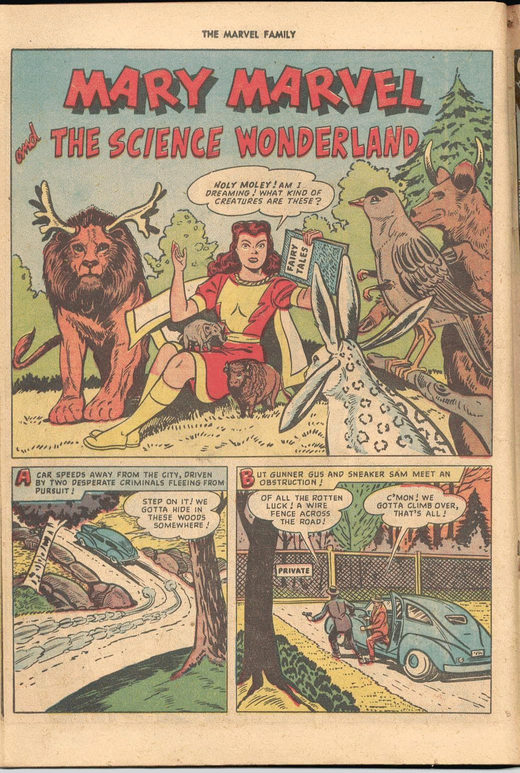 The Marvel Family issue 38 - Page 26