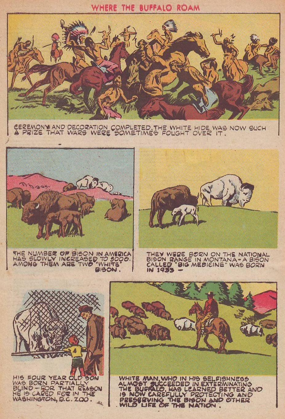 Read online Animal Comics comic -  Issue #25 - 50