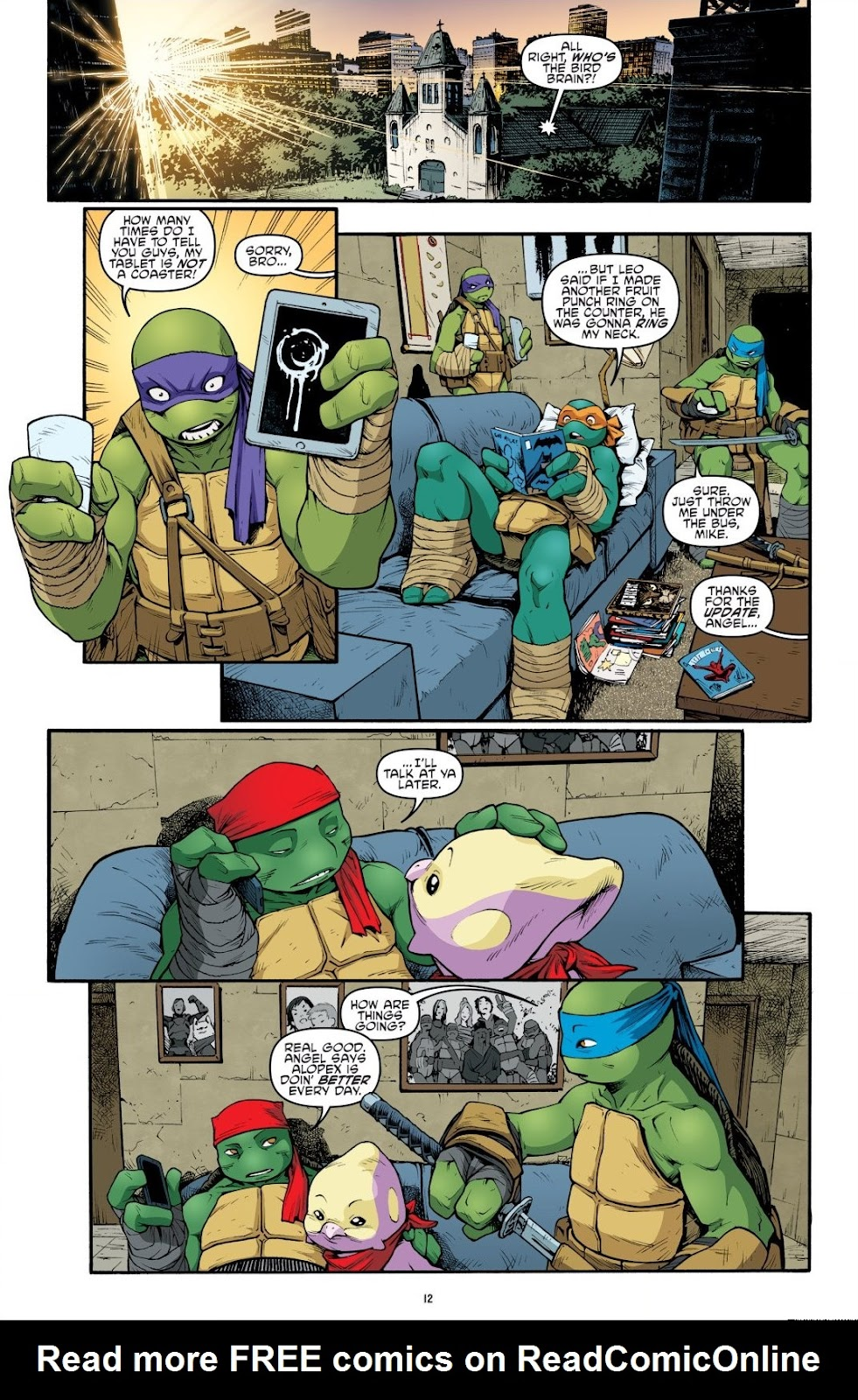Read online Teenage Mutant Ninja Turtles: The IDW Collection comic -  Issue # TPB 9 (Part 1) - 13