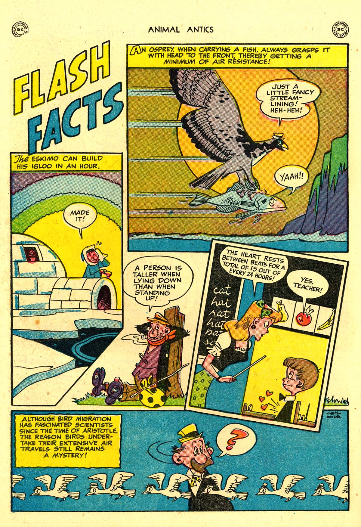 Read online Animal Antics comic -  Issue #18 - 24