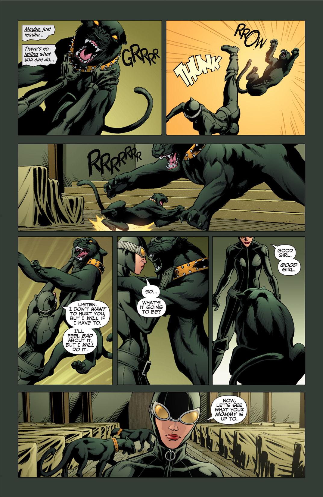 Catwoman (2002) #76 #76 - English 13