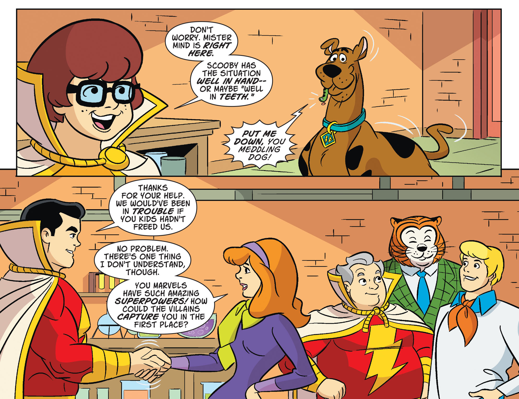 Read online Scooby-Doo! Team-Up comic -  Issue #32 - 20