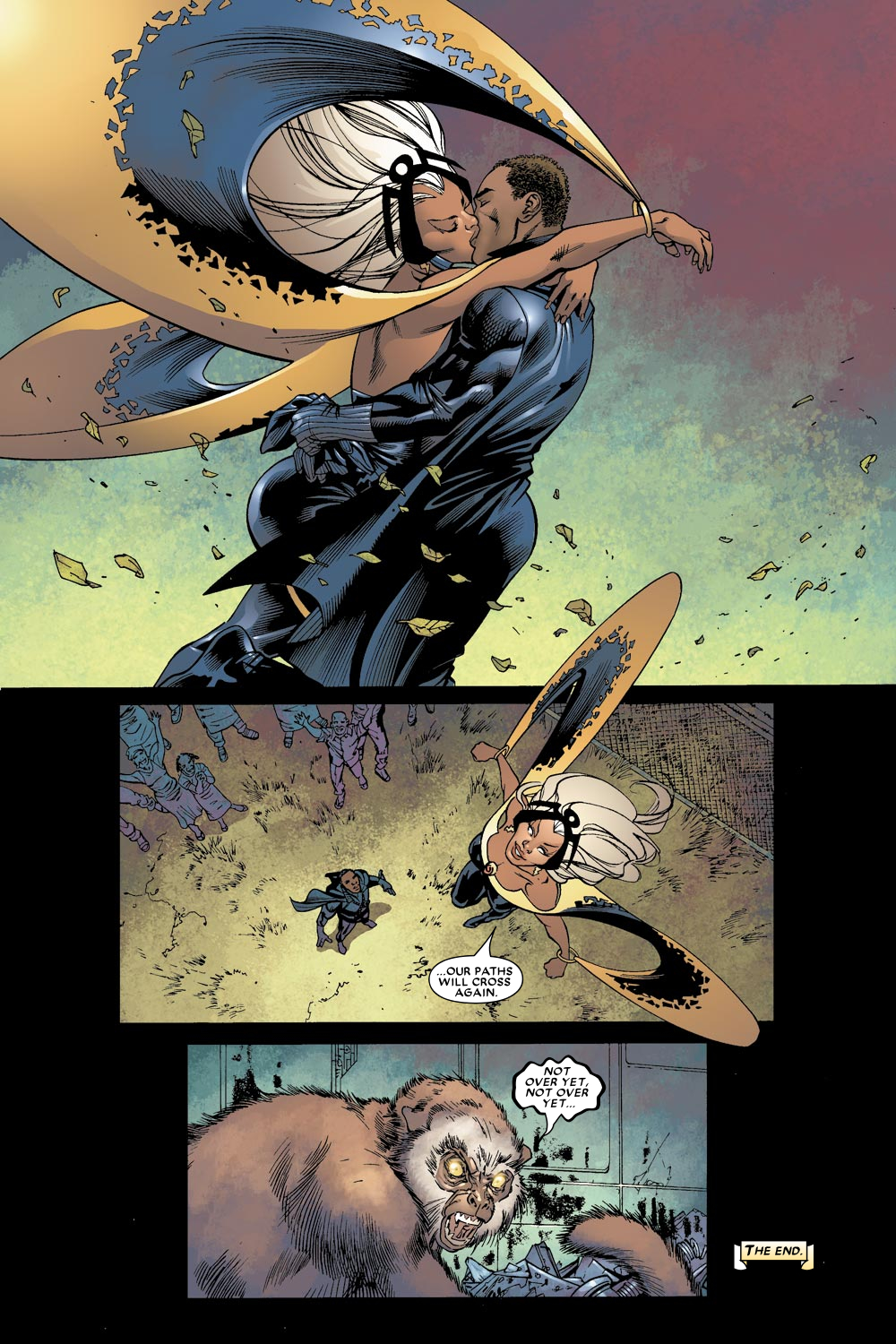 Black Panther (2005) 9 Page 23