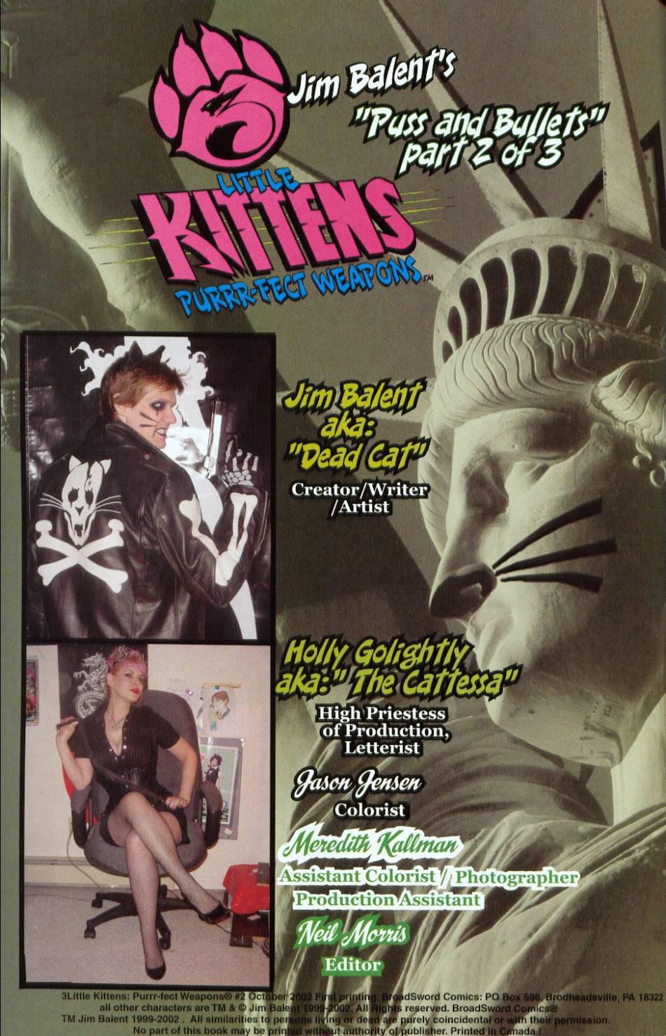 Read online 3 Little Kittens: Purrr-fect Weapons comic -  Issue #2 - 2
