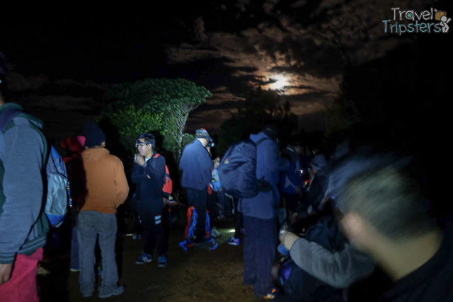 mount pulag camp 1