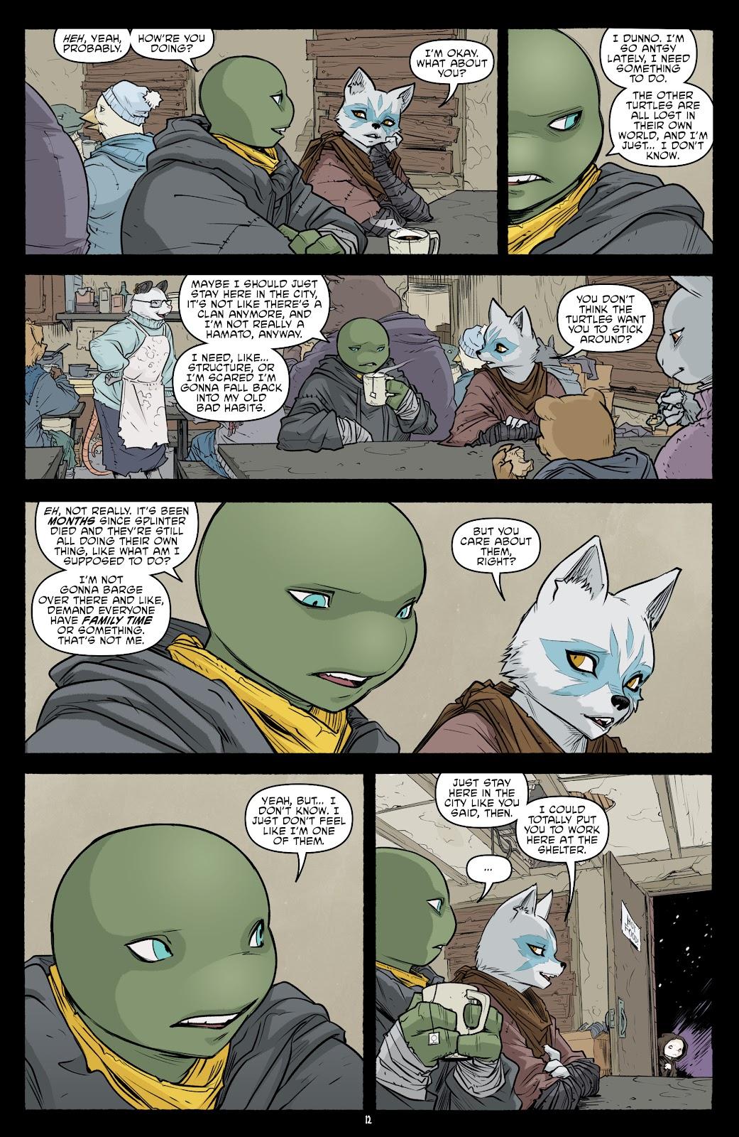 Read online Teenage Mutant Ninja Turtles (2011) comic -  Issue #101 - 14