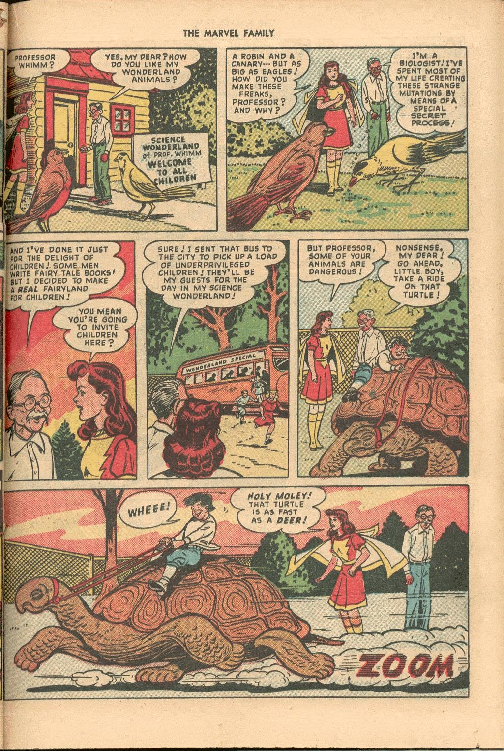 The Marvel Family issue 38 - Page 29