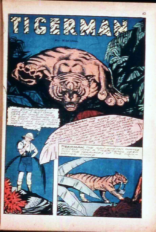 Read online Super-Magician Comics comic -  Issue #17 - 42