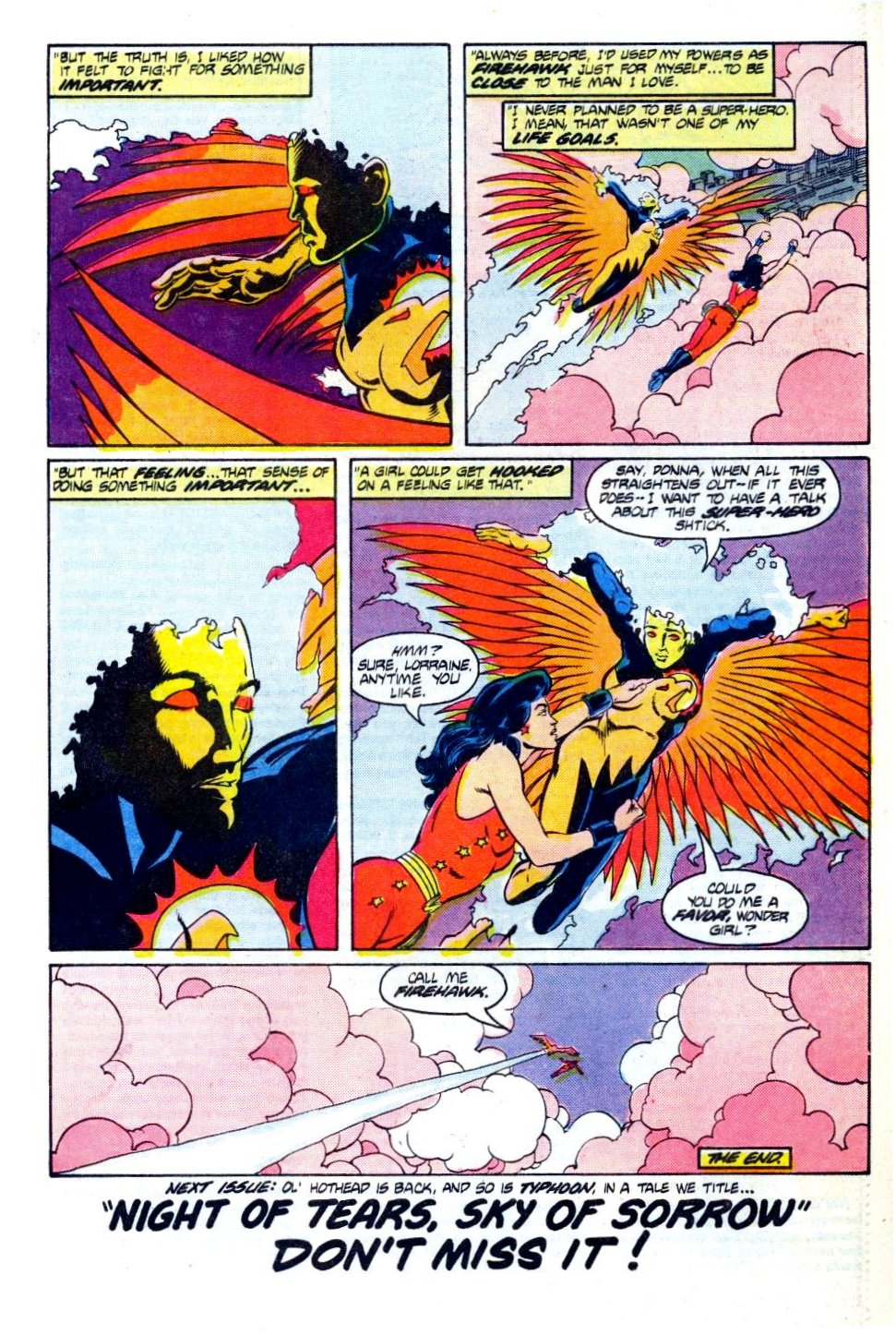 The Fury of Firestorm Issue #42 #46 - English 24