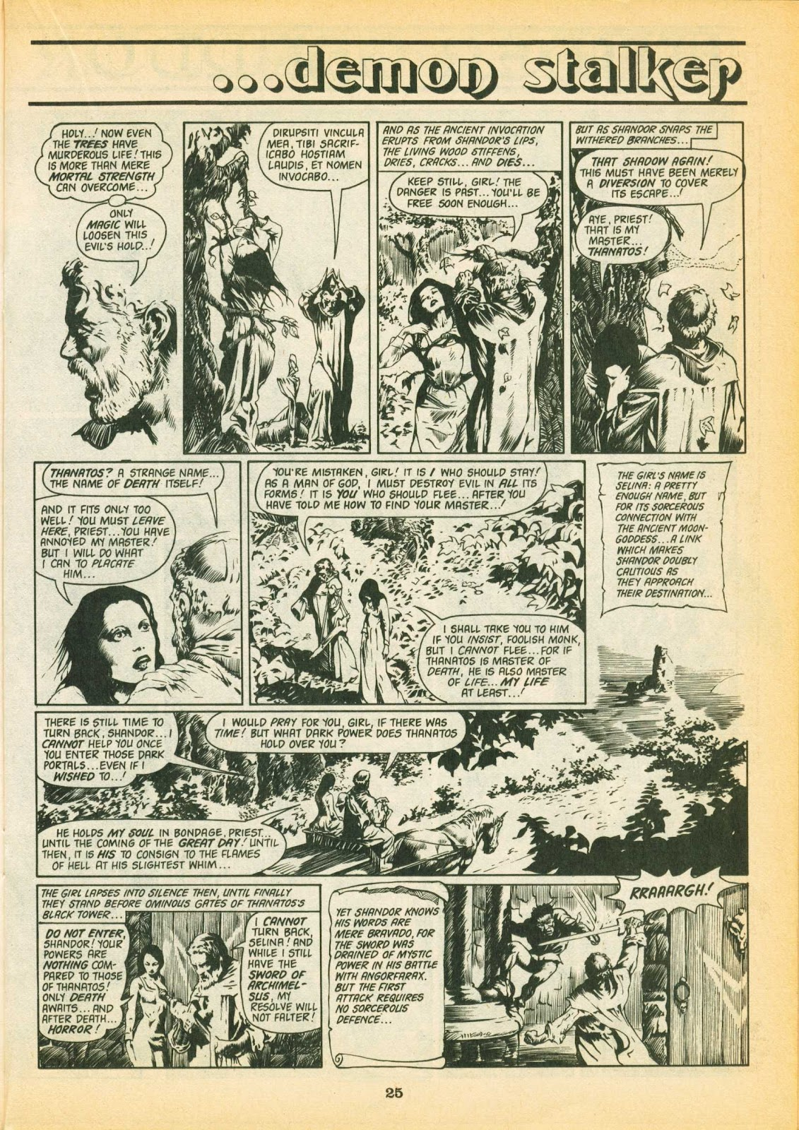 Warrior Issue #2 #3 - English 25