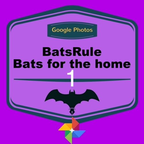 Bats for the Home1