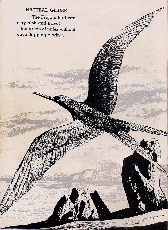 Tarzan (1948) issue 101 - Page 2