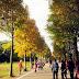【台灣】桃園 大溪落羽松大道 / 八德落羽松森林秘境 紀錄我最愛的家人 秋冬之美