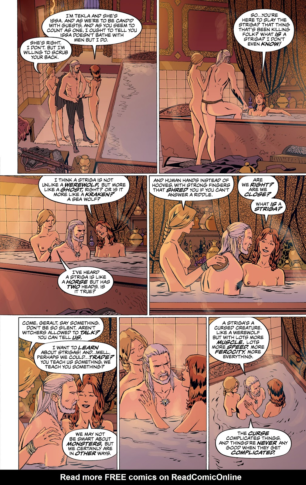Read online The Witcher Omnibus comic -  Issue # TPB (Part 4) - 44