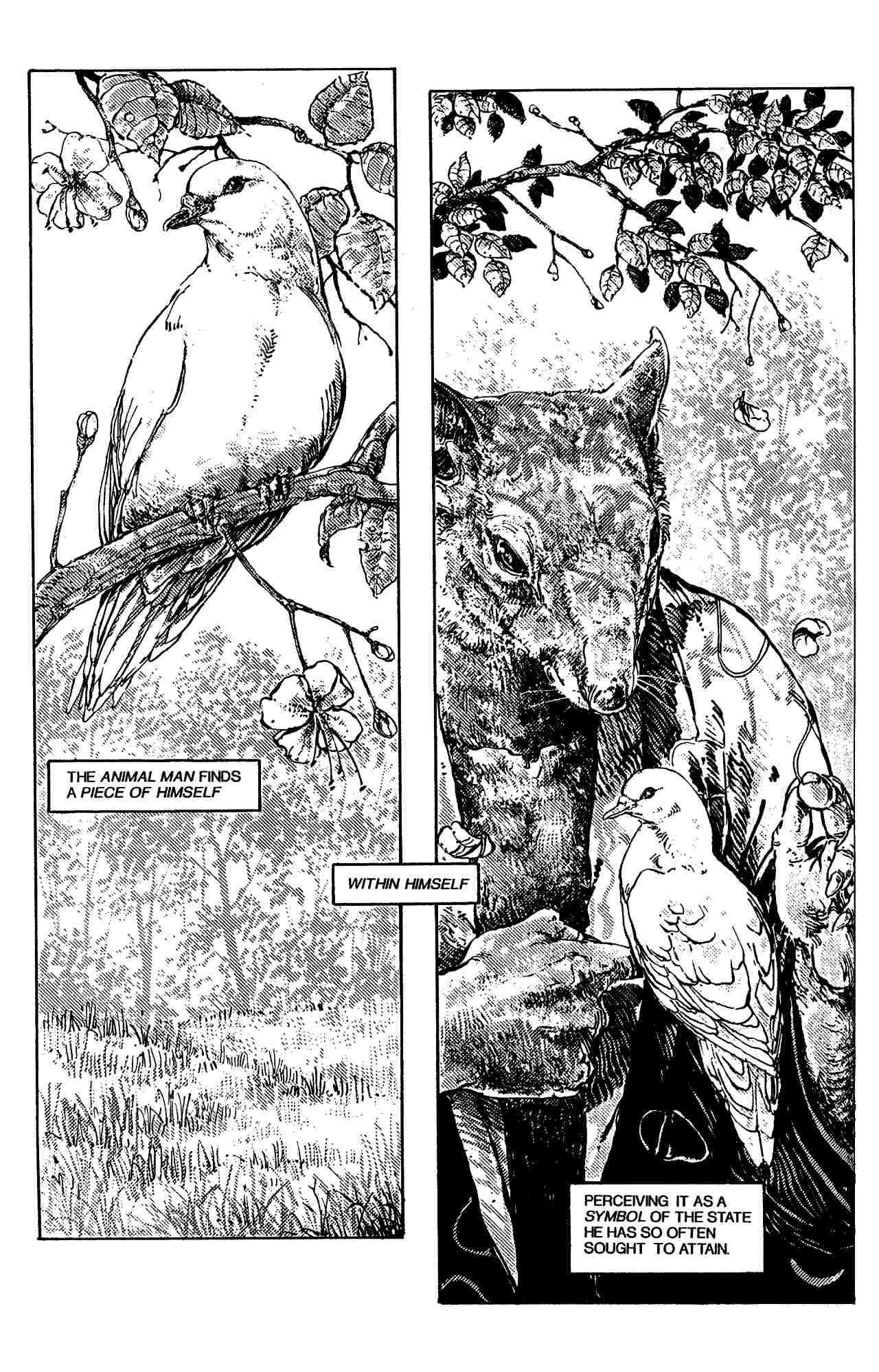 Read online Shell Shock comic -  Issue # Full - 176