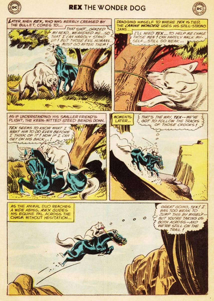 The Adventures of Rex the Wonder Dog issue 35 - Page 23