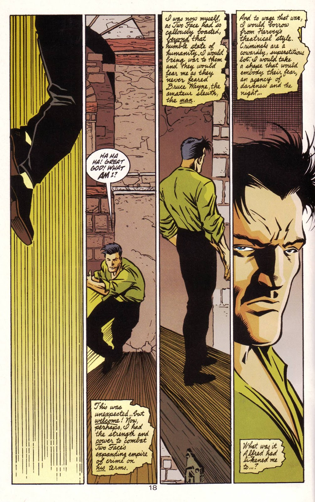 Batman: Two Faces issue Full - Page 19