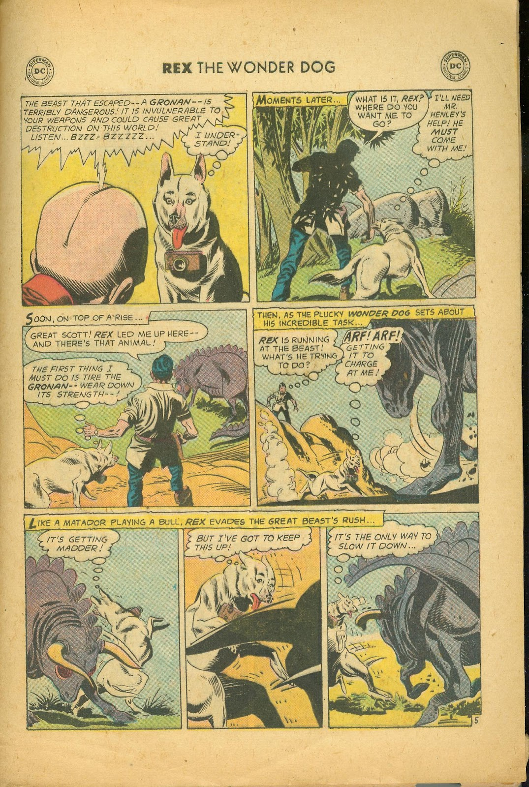 The Adventures of Rex the Wonder Dog issue 39 - Page 29