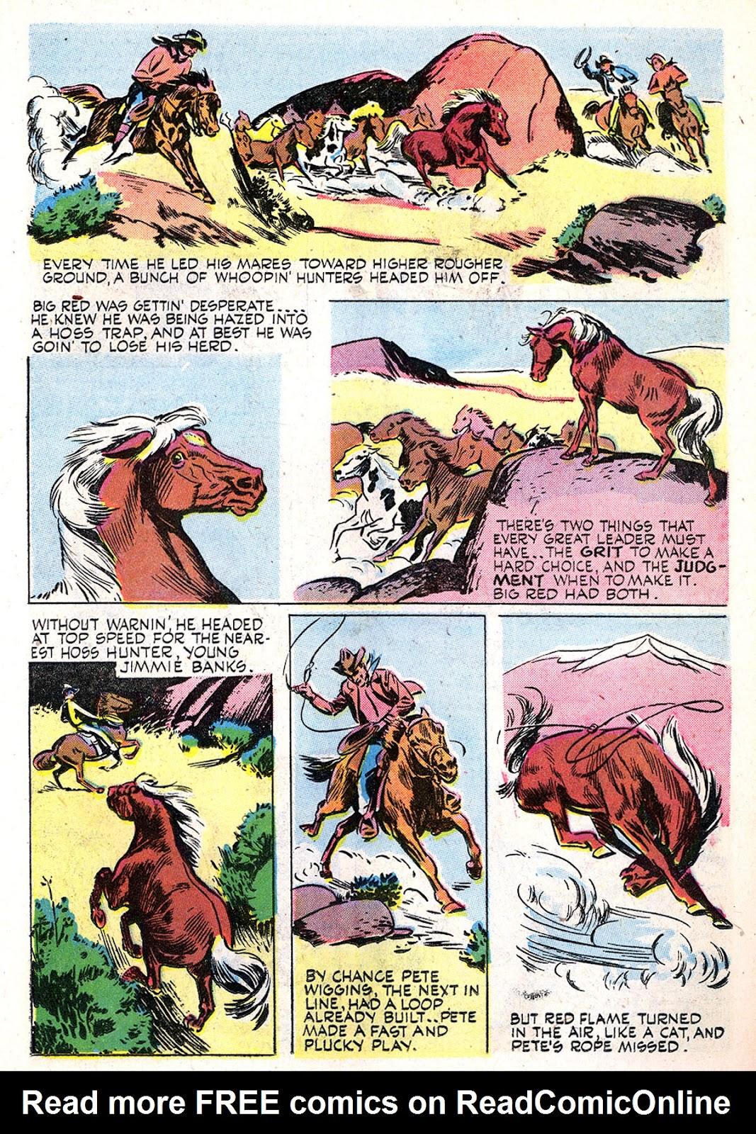 Read online Animal Comics comic -  Issue #29 - 31
