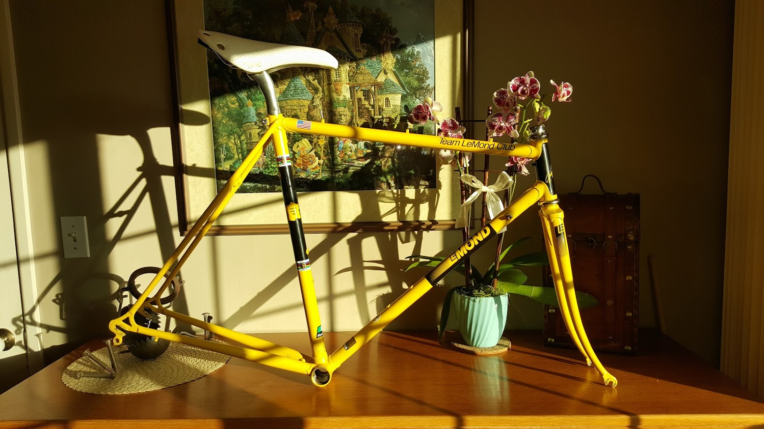 Vintage Team LeMond Club Frameset