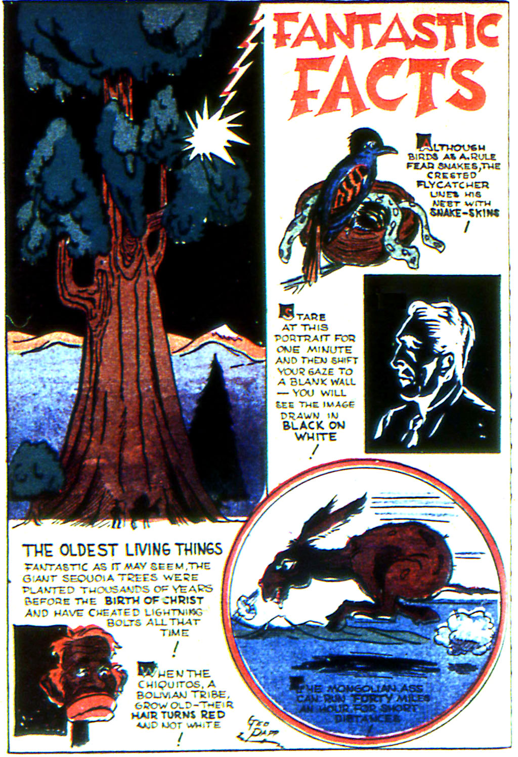 Read online Adventure Comics (1938) comic -  Issue #44 - 66