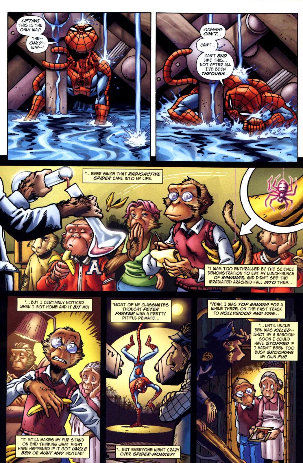 Amazing Spider-Man Family Issue #1 #1 - English 26