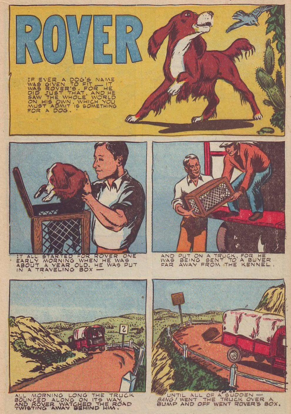 Read online Animal Comics comic -  Issue #20 - 22