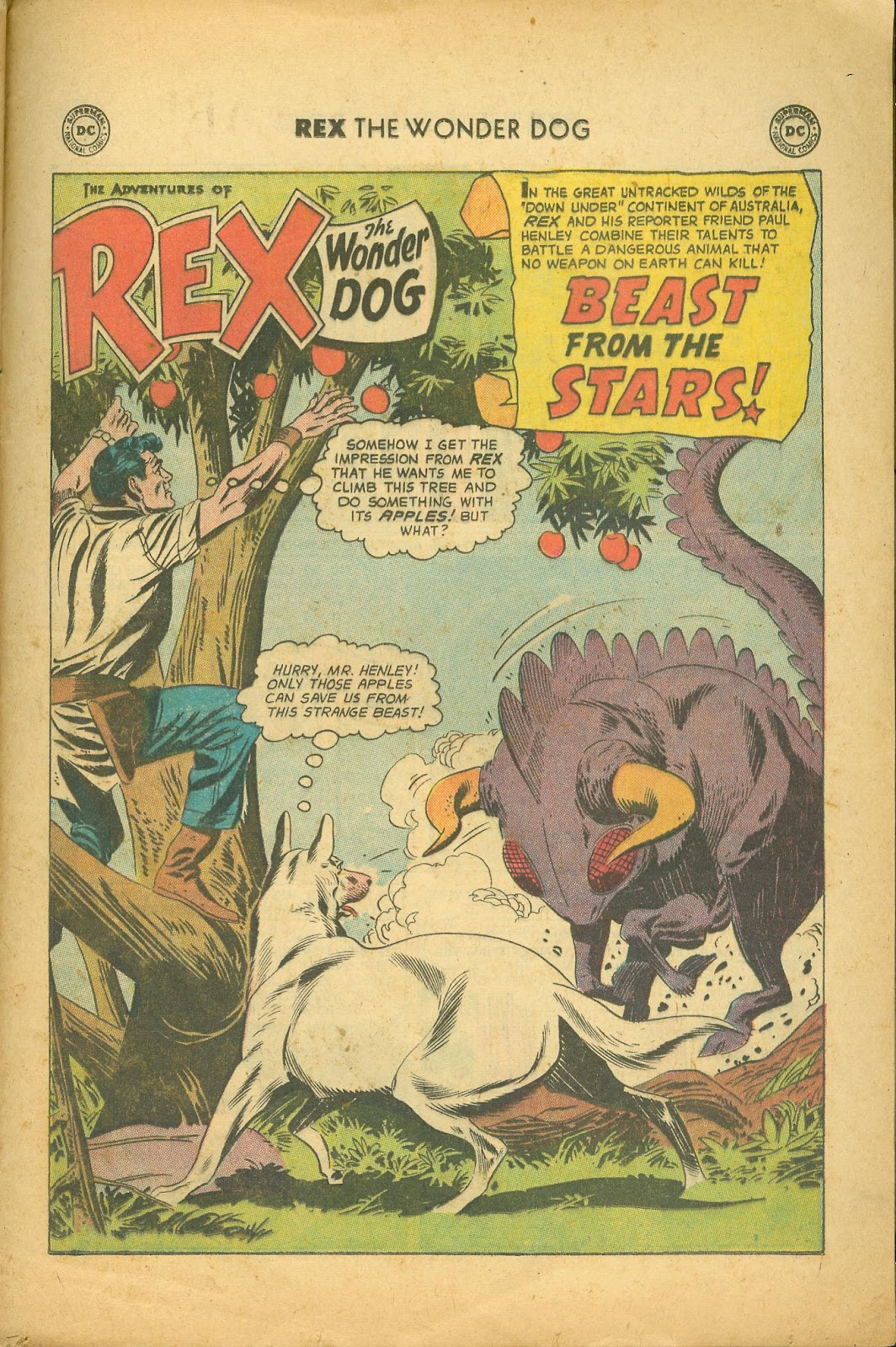 The Adventures of Rex the Wonder Dog issue 39 - Page 25