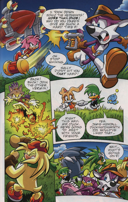 Read online Sonic Universe comic -  Issue #24 - 17