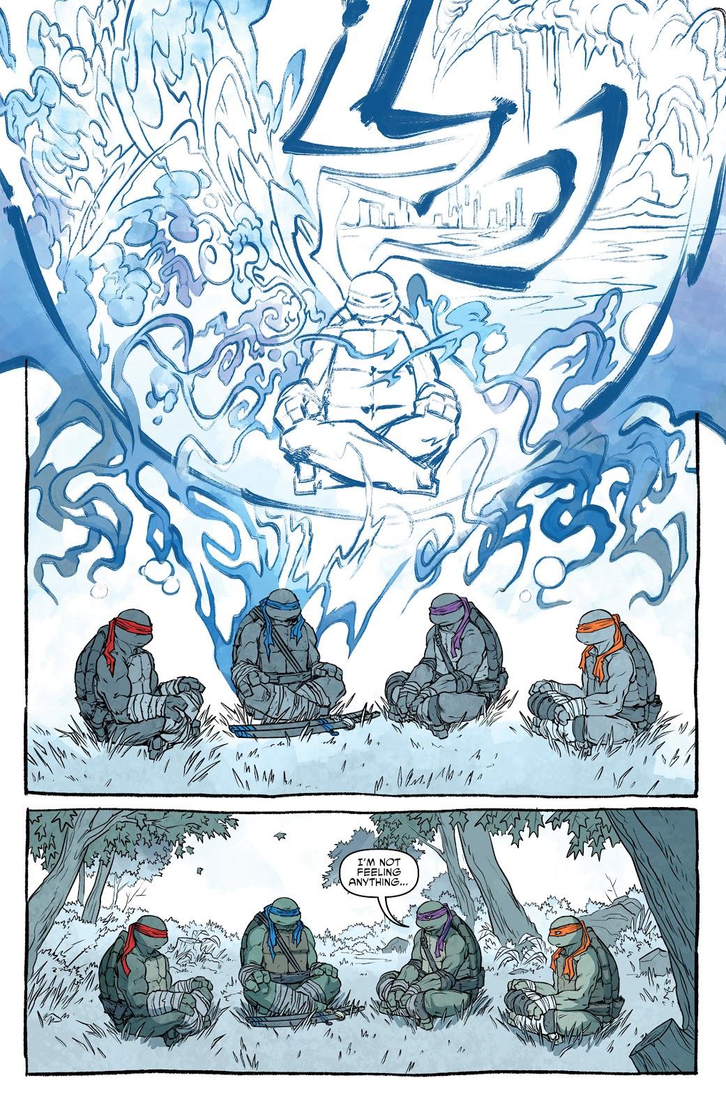 Read online Teenage Mutant Ninja Turtles (2011) comic -  Issue #101 - 31